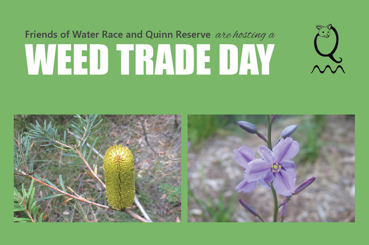 Weed Trade Day